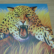 Metal Printer & Metal UV Printer Printing Sample!MT Digital Industry - UV Printer, Eco Solvent Printer, Solvent Printer, Digital Textile Printer Manufacturer & Supplier!