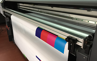 Hybrid Eco Solvent Printer