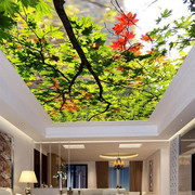 Stretch Ceiling Printing 39