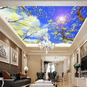 Stretch Ceiling Printing 99