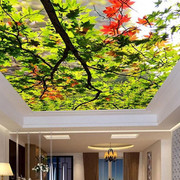 Stretch Ceiling Printing 60