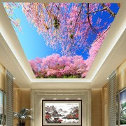 Stretch Ceiling Printing 30