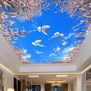 Stretch Ceiling Printing 41