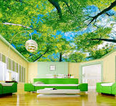 Stretch Ceiling Printing 63