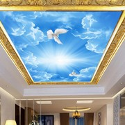 Stretch Ceiling Printing 37